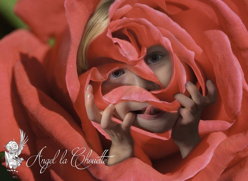 La fille-rose