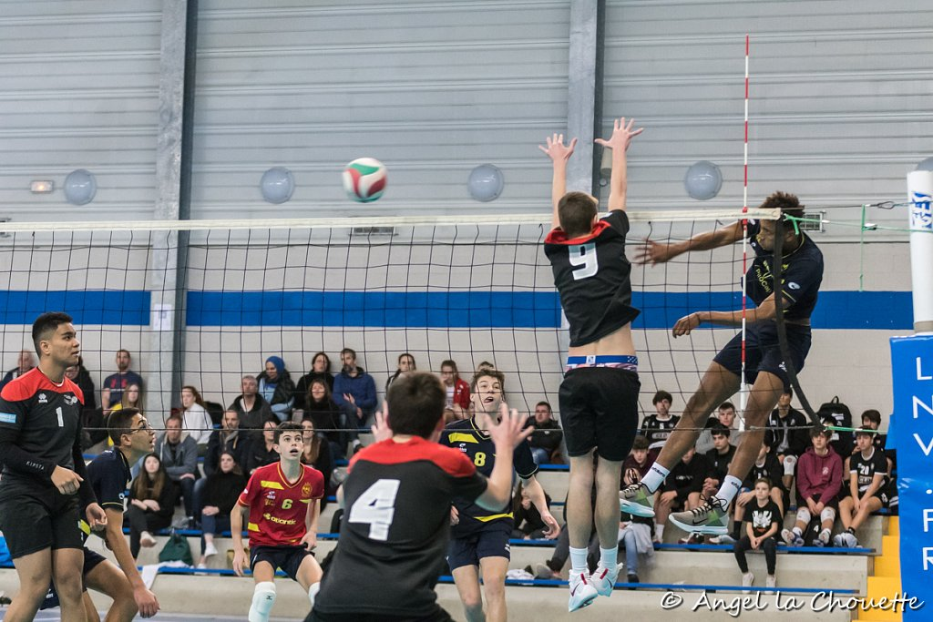ALC-volley-ASI-CDFM17-BD-8211.jpg